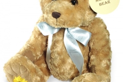 memory bear1
